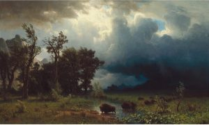This image shows a singular bison standing in a field with some tall, swaying trees to the side. The sky looks simultaneously ominous and dark, yet has light shining through the clouds.