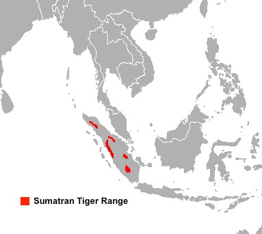 Extremely Minute and Fragmented Range on the Island of Sumatra of the Sumatran Tiger