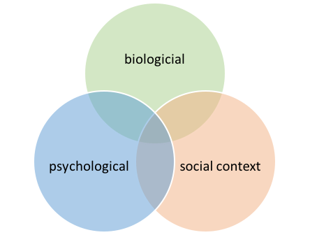 graphic showing how biological, psychological, and social context are connected