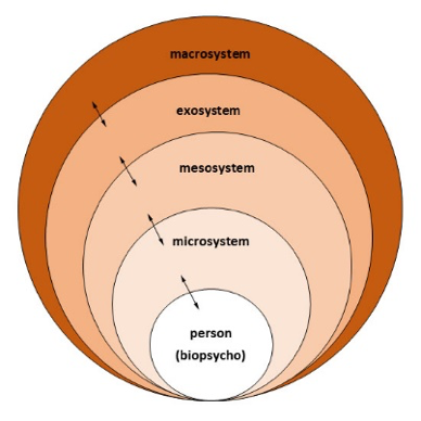 Diagram representing social ecological model's multiple system levels