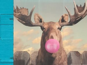 mural of moose with bubble gum