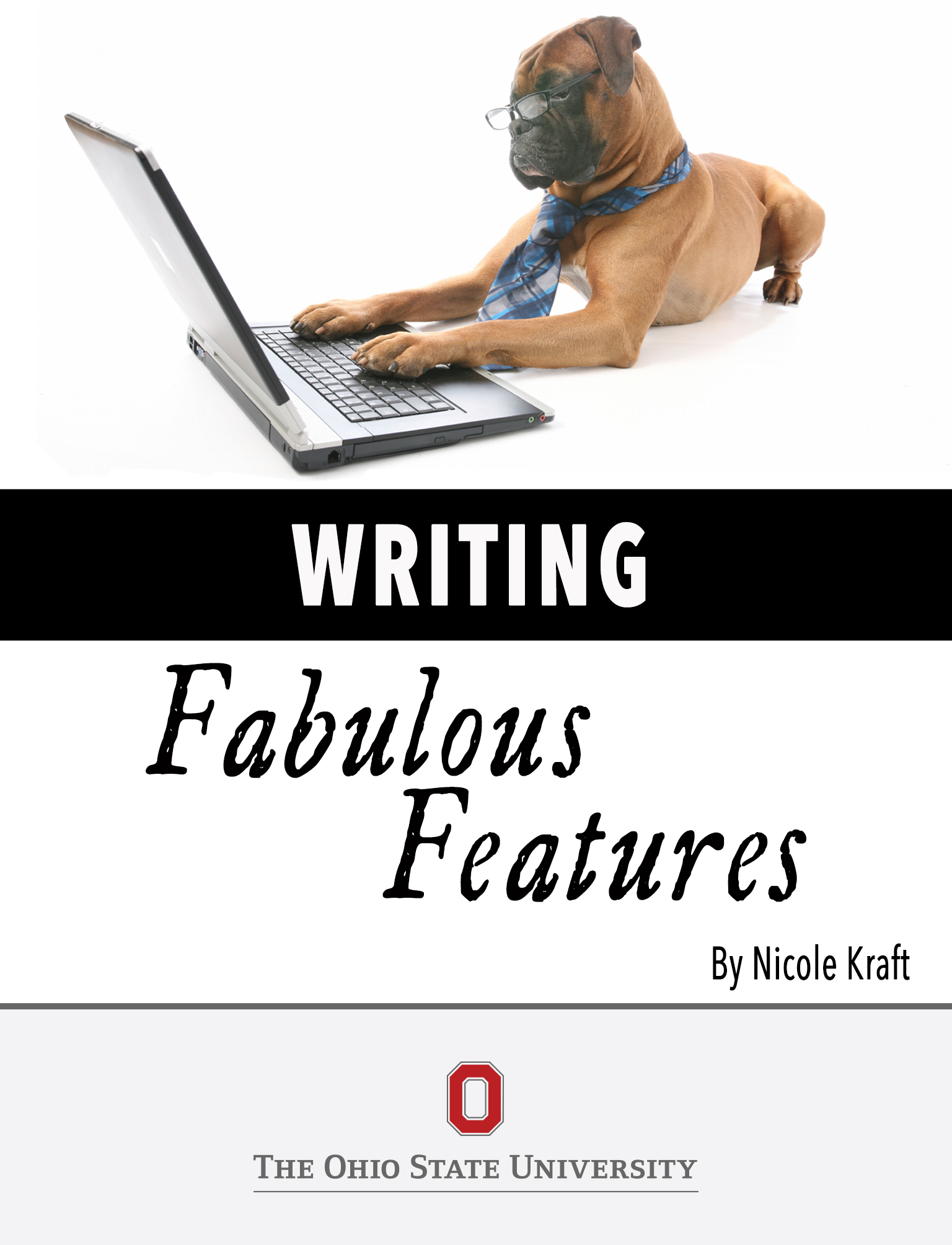 Cover image for Writing Fabulous Features