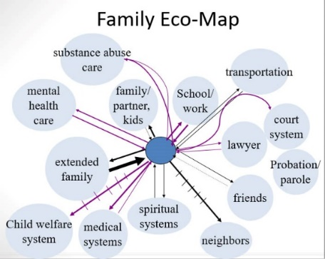 A Family Eco-map