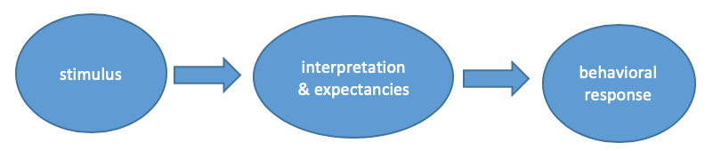 Stimulus leads to interpretation & expectancies, which leads to a behavioral response