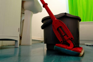Image of a mop and bucket.