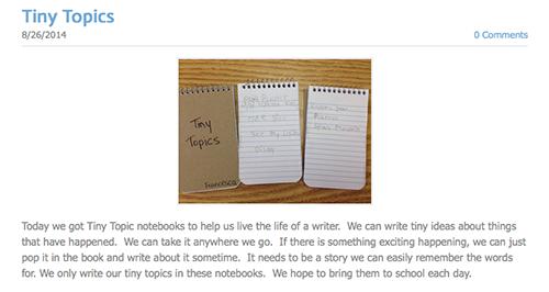 Screenshot of Tiny Topics blog post