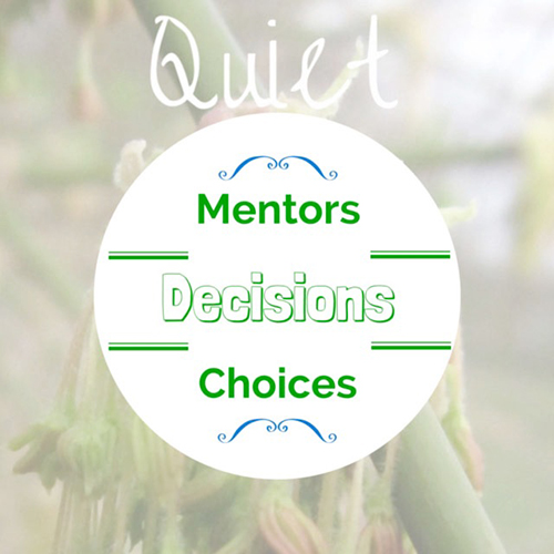 Graphic with the words Mentors, Decisions, and Choices