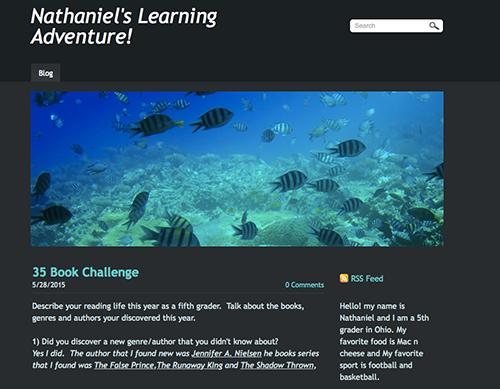 Screenshot of Nathaniel's Digital Portfolio blog