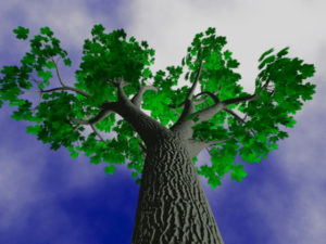 a rendering of the bright green leaf tree