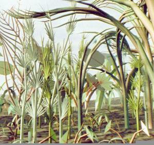 rendering of tropical plants