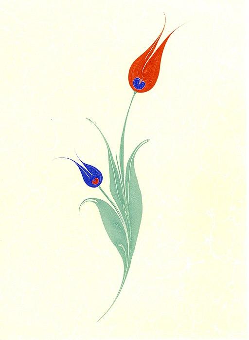 image of Tulip Ebru. by Nedim Sönmez