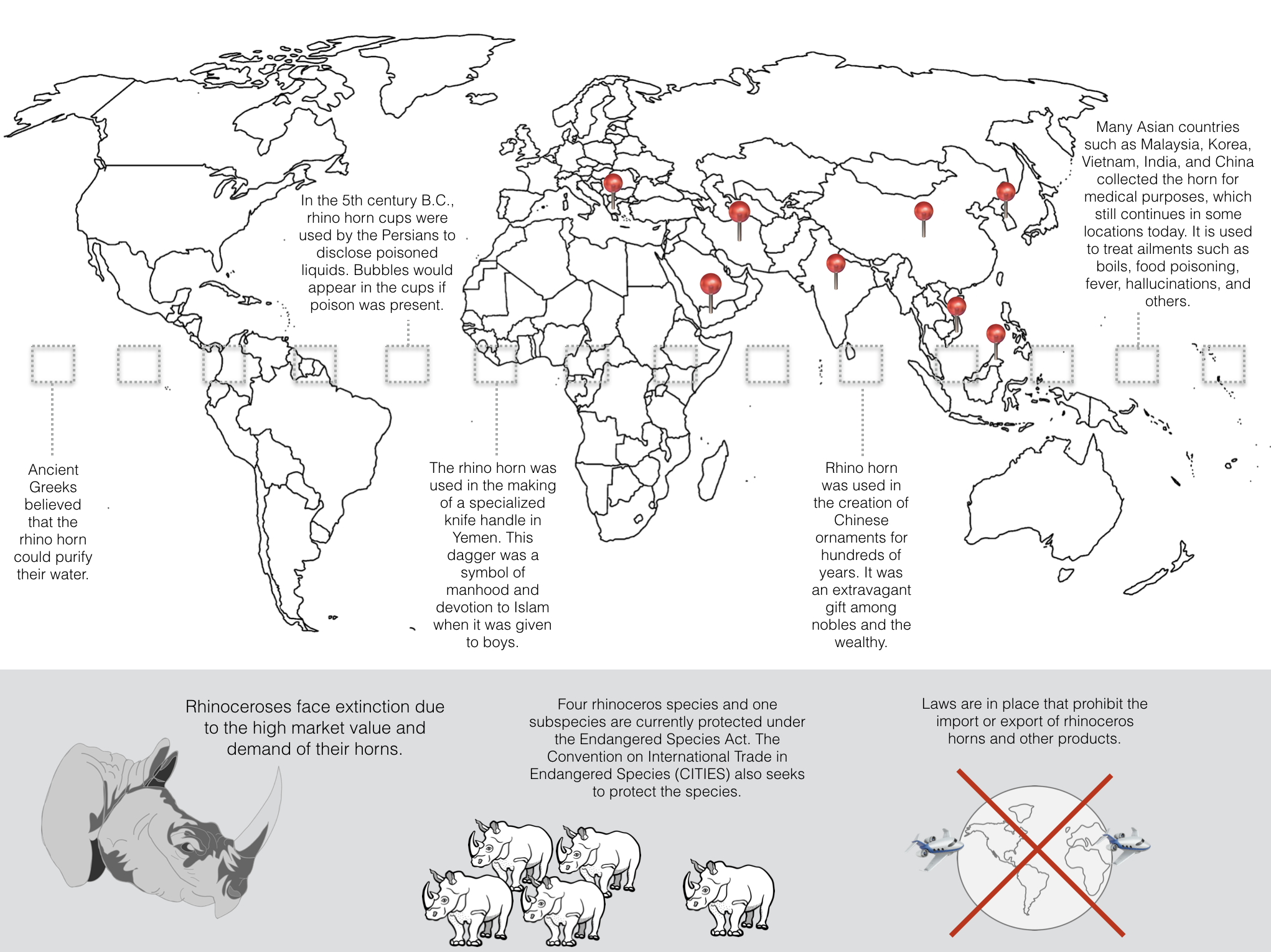 created graphic of a word map showing pins in countries across the world that still utilize rhino horn for various uses