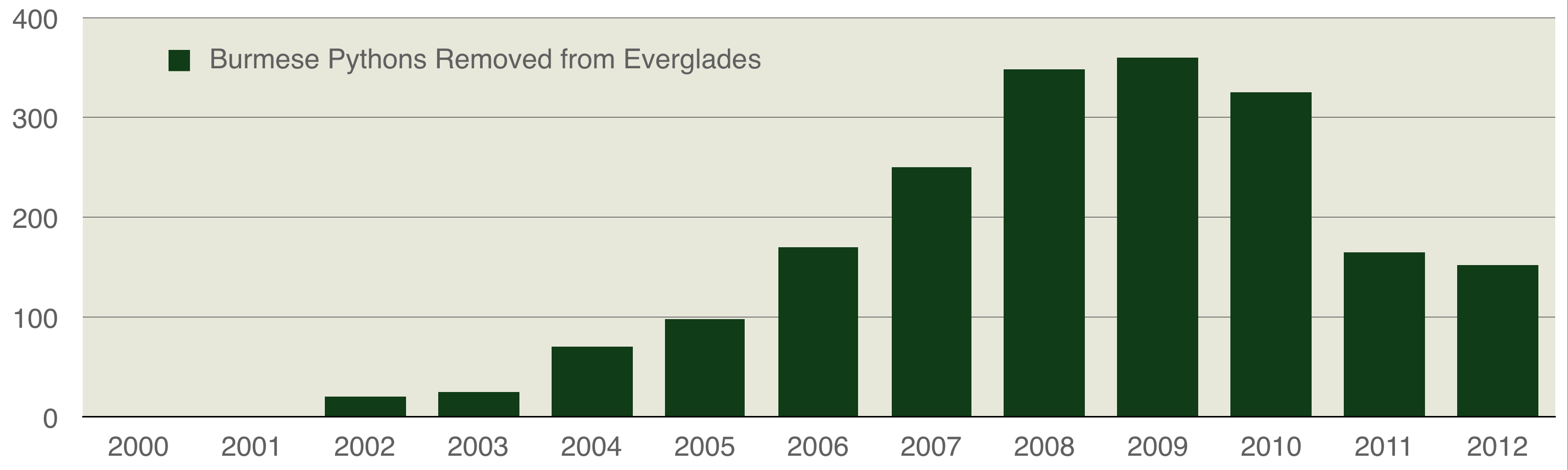 bar graph showing the number of pythons removed per year from the Florida Everglades with a peak in 2009