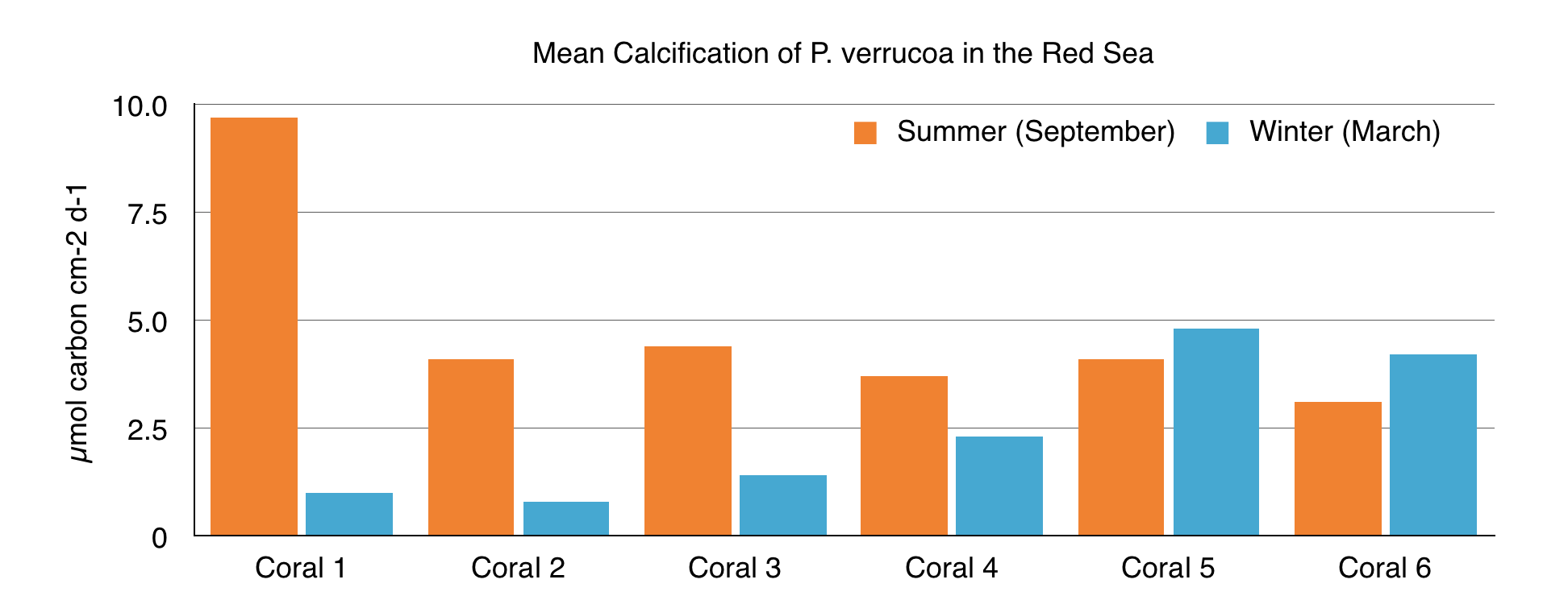 bar graph of mean calcification of P.verrucoa in the Red Sea showing six different corals in both summer and winter