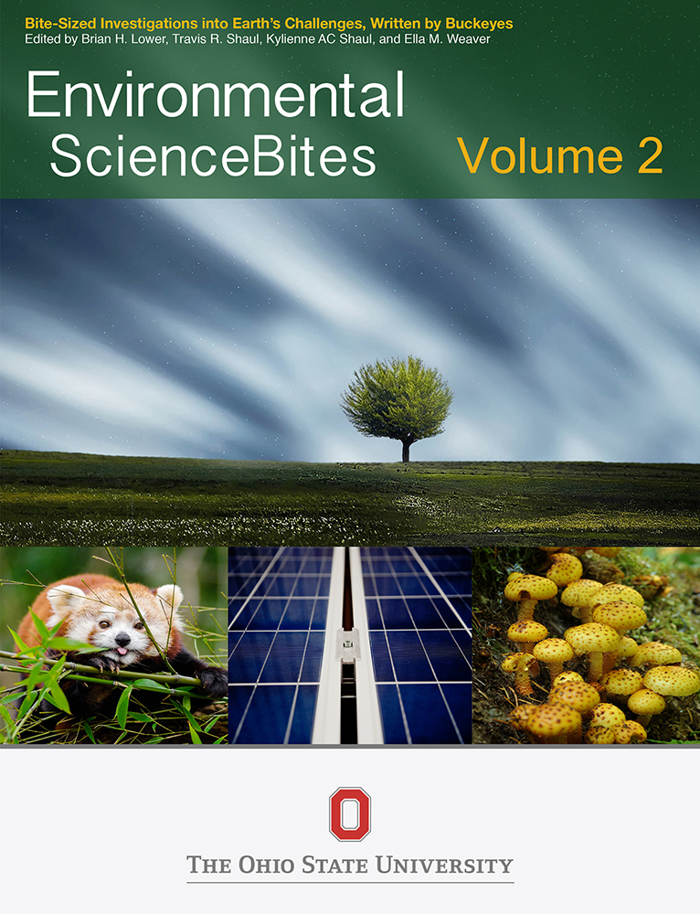 Cover image for Environmental ScienceBites Volume 2